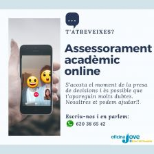 assessorament acadèmic